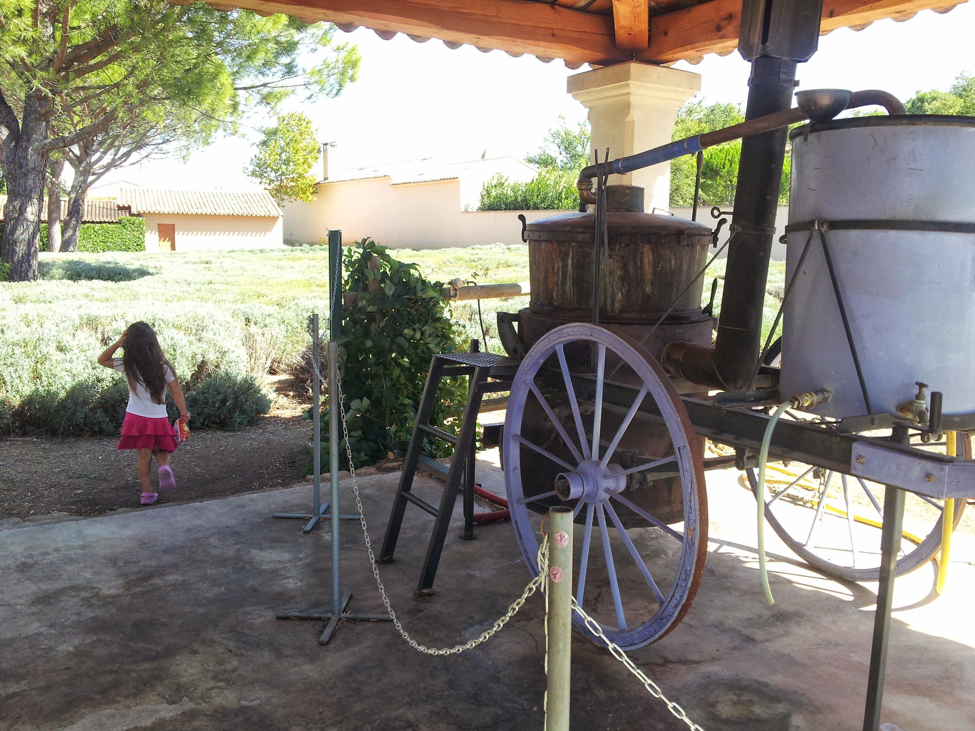Mobile lavender distiller!